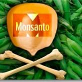 Jornada Mundial contra Monsanto en Plaza San Martín